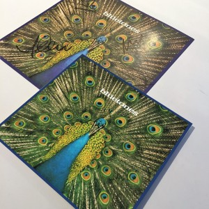 Bluetones Expecting To Fly 2CD and Art Print